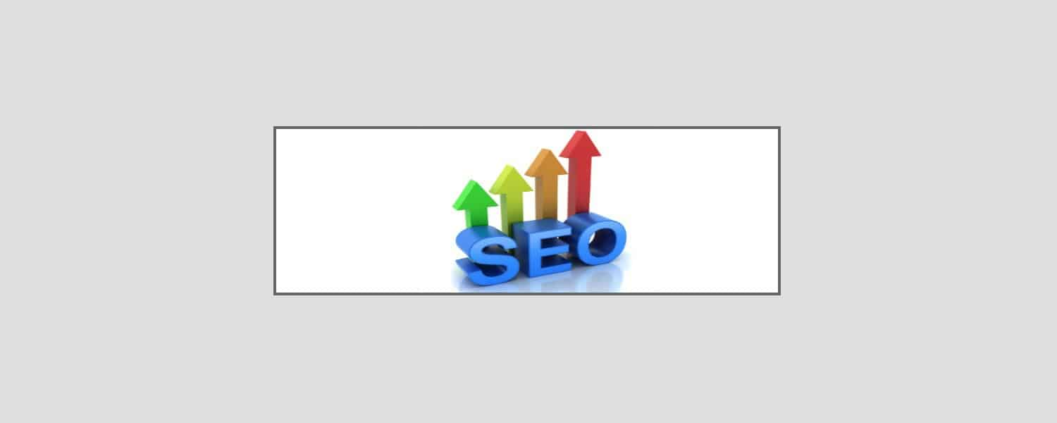 Marketing en Buscadores, Rankings SEO o ROI